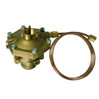 Differential Pressure Control/Zone Valve Fixed-TS 23kPa male thread