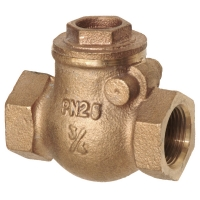 Copper Alloy Swing Check Valve PN25