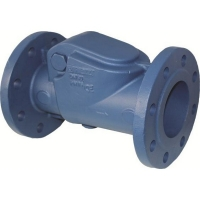 Cast Iron Swing Check Valve PN16